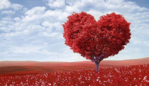愛情と体幹をテーマに,測定方法の妥当性と信頼性について考える